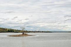 Малый остров на реке с деревом Стоковые Фотографии RF