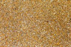 Малый песок на поле Стоковое Изображение RF