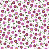 Малый пинк цветет безшовная картина Стоковая Фотография RF