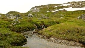 Малый поток в Альпах, вода горы бежит над камнями в свежем зеленом луге Высокие пики горных вершин в предпосылке видеоматериал
