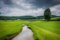 Малый поток в поле фермы в сельском Carroll County, Мэриленде стоковая фотография