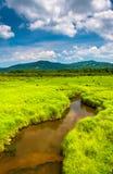 Малый поток и дистантные горы на парке штата долины Canaan, стоковая фотография