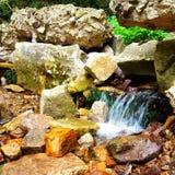 малый поток Стоковые Фото