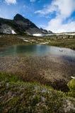Малый пруд в лугах Illal Стоковое Фото