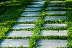 Малый путь с травой Стоковые Изображения