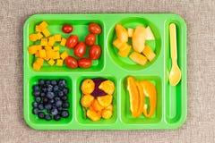 Малый пластичный поднос обеда с плодоовощ и ложкой Стоковое Фото