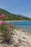 Малый пляж с открытыми морями в Kefalonia, Греции Стоковое фото RF