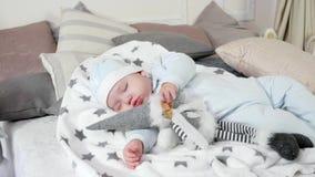 Малый ребенок спит, сладостный младенец спать на кровати ` родителей в уютной атмосфере в доме, мальчик уснувшее обнимая a акции видеоматериалы