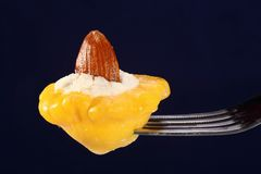 Малый сквош заполненный с сыром Стоковые Изображения RF
