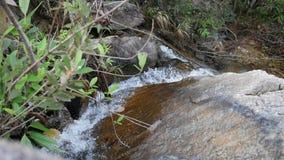 Малый тропический водопад леса каскадируя над утесами Замедленное движение HD Таиланд акции видеоматериалы