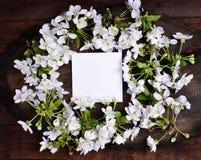 Малый чистый белый лист бумаги Стоковые Фото