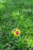 Малый шарик на зеленой траве Стоковое Фото