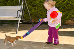 Малый щенок играет с милой маленькой девочкой Стоковое Фото