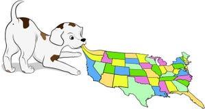 Малый щенок играя с картой США Стоковое Изображение