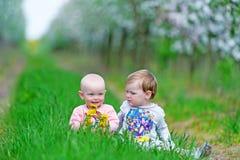 2 малых дет сидят в зеленой траве Стоковые Фотографии RF