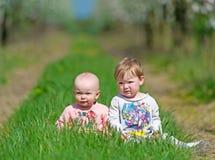 2 малых дет сидят в зеленой траве Стоковые Фото