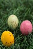 3 малых пасхального яйца устроенного удобно в траве Стоковые Изображения