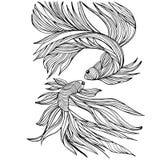 2 малых рыбы, yin-yang, нарисованный вручную, иллюстрация Стоковое Изображение