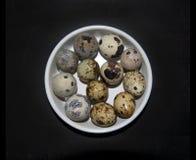 12 малых яичек триперсток Стоковые Фотографии RF