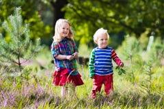 Малыши играя в парке осени Стоковая Фотография