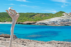 Мальорка, Майорка, Балеарские острова, Испания Стоковые Изображения