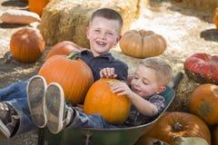 2 мальчика играя в тачке на заплате тыквы Стоковая Фотография RF
