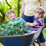 2 мальчика имея потеху в тачке нажимая матерью Стоковое Изображение RF