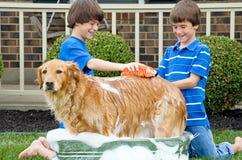 Мальчики давая собаке ванну стоковая фотография