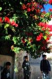 Мальчики в улице Иерусалима Стоковые Фотографии RF
