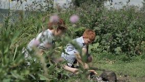 Мальчики жаря сосиски на пикнике сток-видео