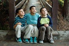 Мальчики смотря вверх Стоковая Фотография RF