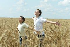 Мальчики стоя на поле Стоковое фото RF