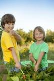 Мальчики с морковью и в саде, детях жмут овощ стоковая фотография rf