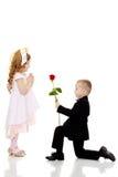 Мальчик дает девушке цветок стоковая фотография