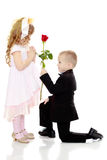 Мальчик дает девушке цветок стоковые фото