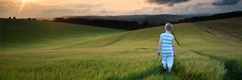 Мальчик ландшафта панорамы концепции молодой идя через поле на su стоковое фото rf