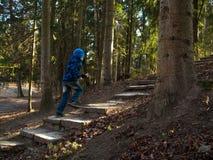 Мальчик бежит вверх по лестницам Стоковые Изображения RF