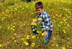 Мальчик весны Стоковые Фотографии RF