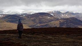 Мальчик в горах Cairngorm в Шотландии Стоковое фото RF