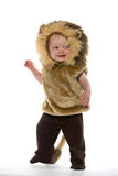 Мальчик в костюме льва Стоковое Фото