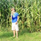 Мальчик в кукурузном поле Стоковое Изображение RF