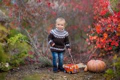 Мальчик в парке осени наслаждаясь временем стоковое изображение rf