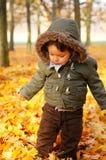 Мальчик в парке Стоковое Изображение