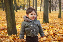 Мальчик в парке Стоковое фото RF
