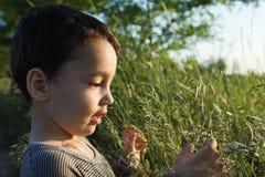 Мальчик в траве Стоковое фото RF