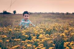Мальчик в луге Стоковые Изображения