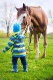 Мальчик в gumboots играя с лошадью Стоковые Изображения