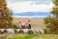 Мальчик девушек играя связки фермы Стоковые Фотографии RF
