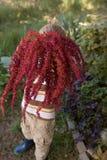 Мальчик держа цветки амаранта Стоковые Фото