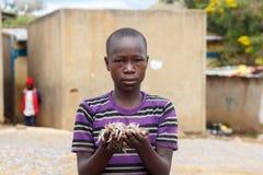 Мальчик держит рыб Стоковые Фото